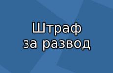 Штраф за развод 30000 рублей — с какого года вступит в силу новый закон?