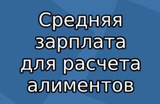 Средняя зарплата в России в 2020 году для расчета алиментов по данным Росстата