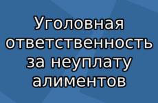 Уголовная ответственность за неуплату алиментов (ст. 157 УК РФ)