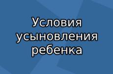 Порядок и условия усыновления ребенка в России