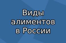 Виды алиментов в России и их определение